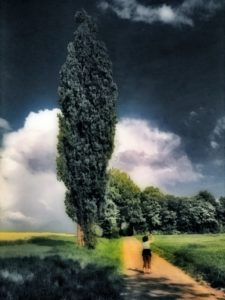 Small Woman And The Tree