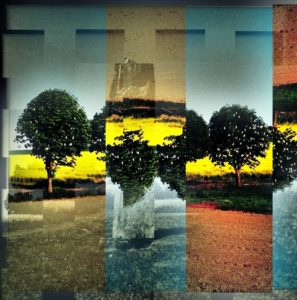 Four Trees Decim8ted
