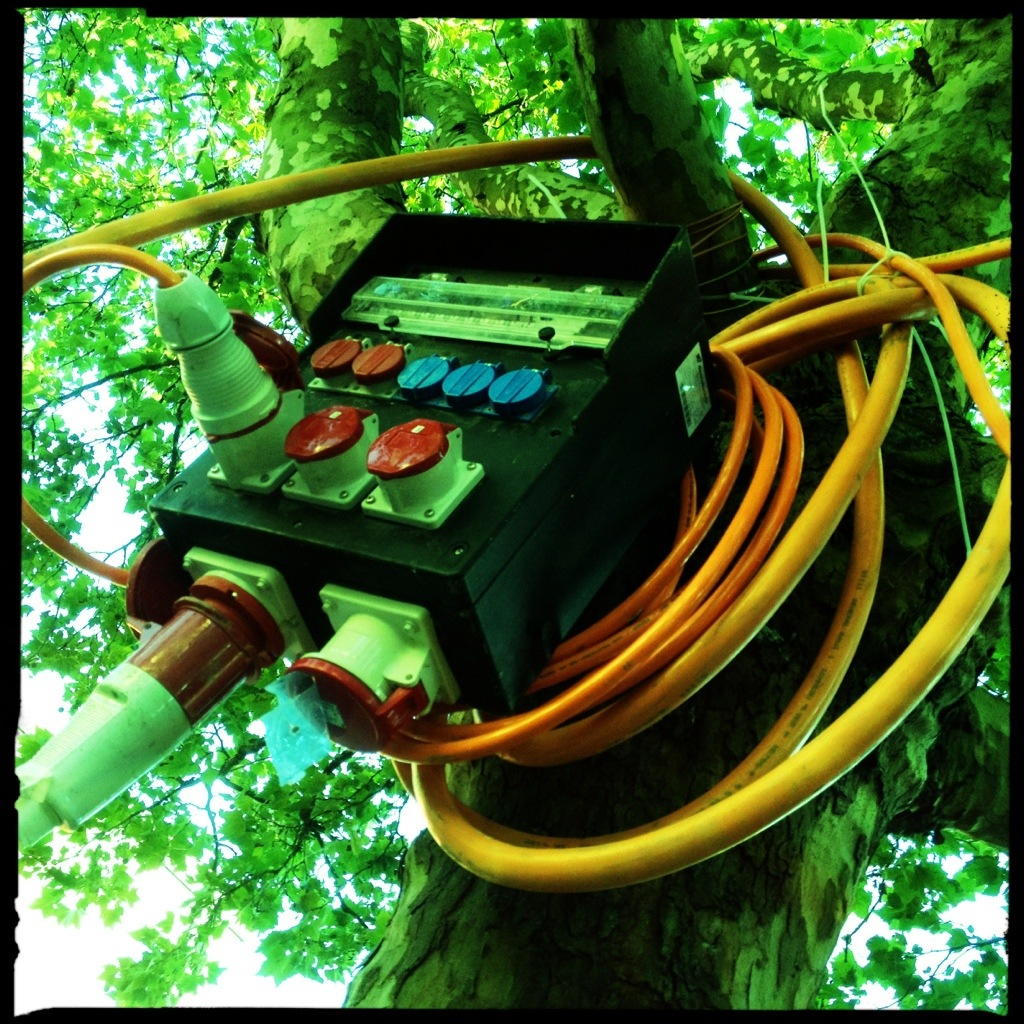 Electrical object in a tree