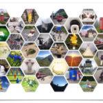 Wabenförmige, bunte Bilder auf weißem Postkartenhintergrund