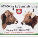 Plakette mit zwei Kuhschädeln im Profil, sowie einer Schweizer Flagge und der Aufschrift 85'000 kg Lebensleistung