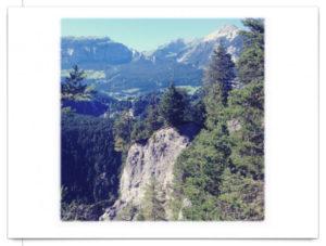Wild mit Fichten bewachsene, steil abfallende Felsen. Das Bild ist quadratisch auf weißem Postkartenhintergrund